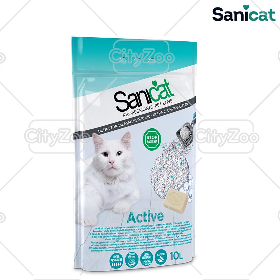 sanicat-bentonite-active