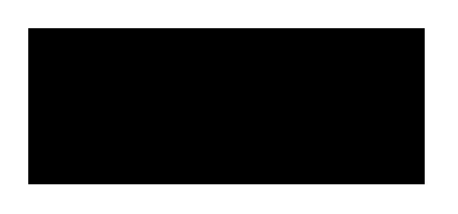 logo-pawise