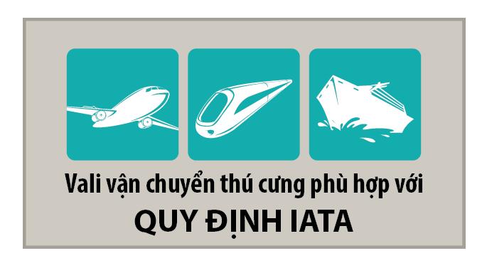 tieu-chuan-van-chuyen-cho-meo