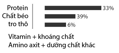 chat-dinh-duong-trong-sua-meo