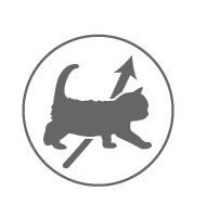 icon-meo-phat-trien