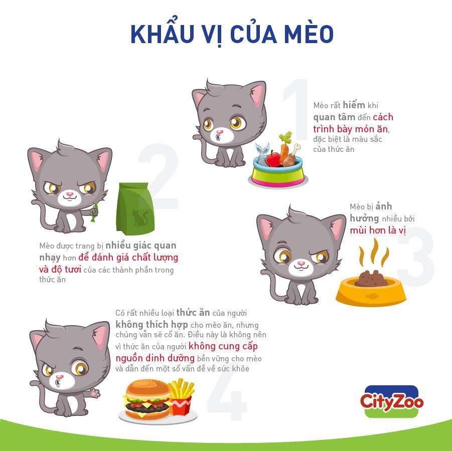 khau-vi-cua-meo