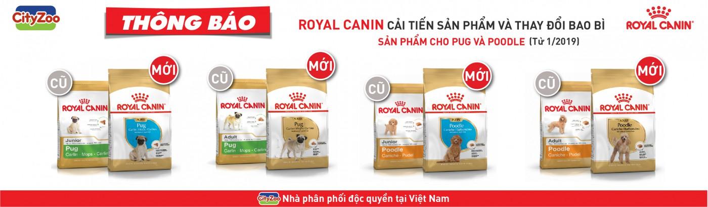 ROYAL CANIN cải tiến sản phẩm và thay đổi bao bì