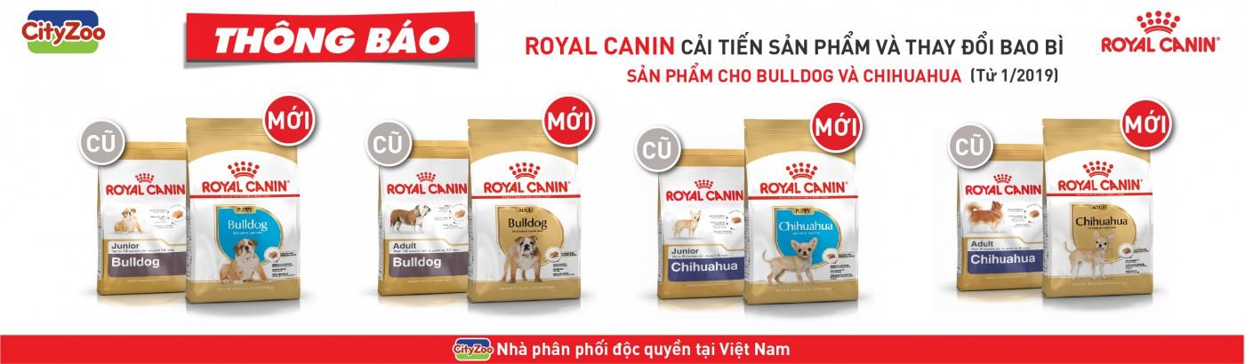ROYAL CANIN cải tiến và thay đổi bao bì sản phẩm