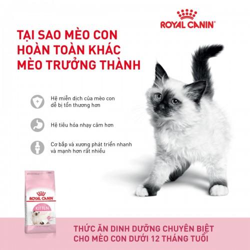 THỨC ĂN CHO MÈO ROYAL CANIN KITTEN